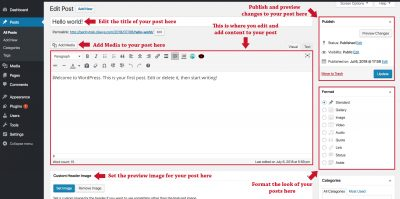 A Labeled overview of a WordPress Post Editor
